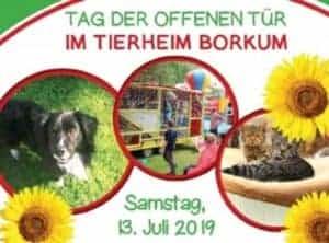 Tag der offenen Tür im Tierheim @ Tierheim Borkum