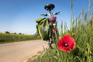Nationalpark-Radtour @ Fahrrad-Parkplatz Gezeitenland